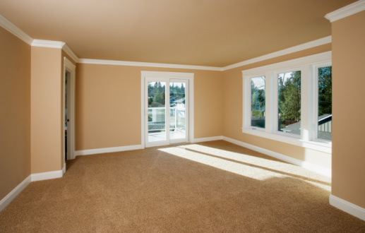 Picture of carpet cleaning